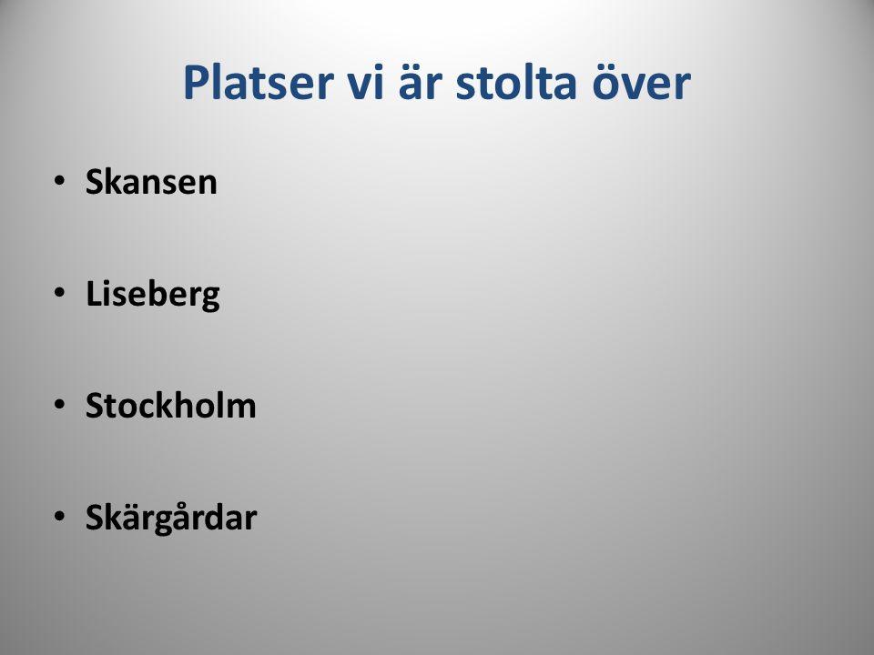 Platser vi är stolta över Skansen Liseberg Stockholm Skärgårdar