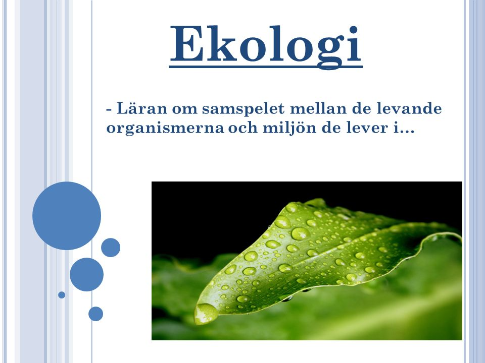 Ekologi - Läran om samspelet mellan de levande organismerna och miljön de lever i…