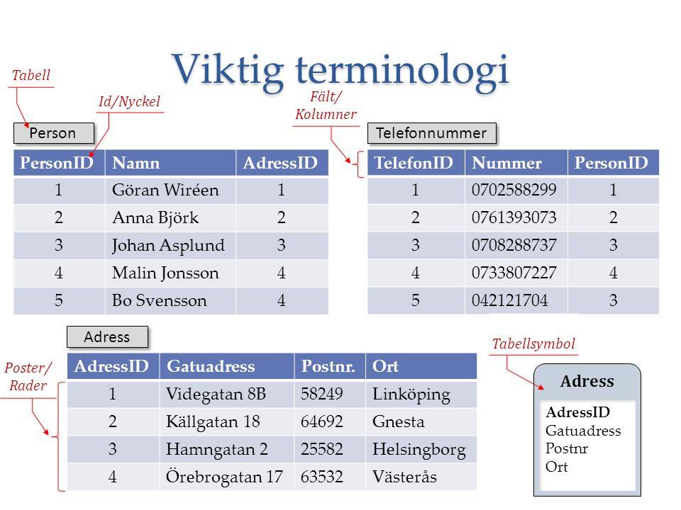 Viktig terminologi 6 PersonIDNamnAdressID 1Göran Wiréen1 2Anna Björk2 3Johan Asplund3 4Malin Jonsson4 5Bo Svensson4 TelefonIDNummerPersonID 1070258829
