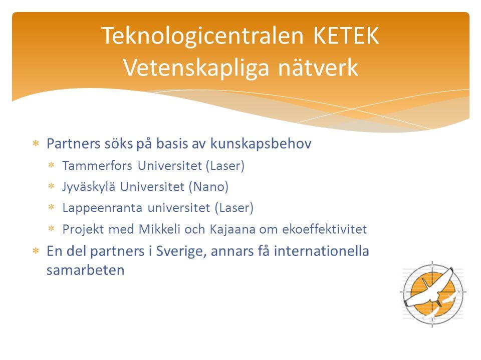  Partners söks på basis av kunskapsbehov  Tammerfors Universitet (Laser)  Jyväskylä Universitet (Nano)  Lappeenranta universitet (Laser)  Projekt med Mikkeli och Kajaana om ekoeffektivitet  En del partners i Sverige, annars få internationella samarbeten Teknologicentralen KETEK Vetenskapliga nätverk