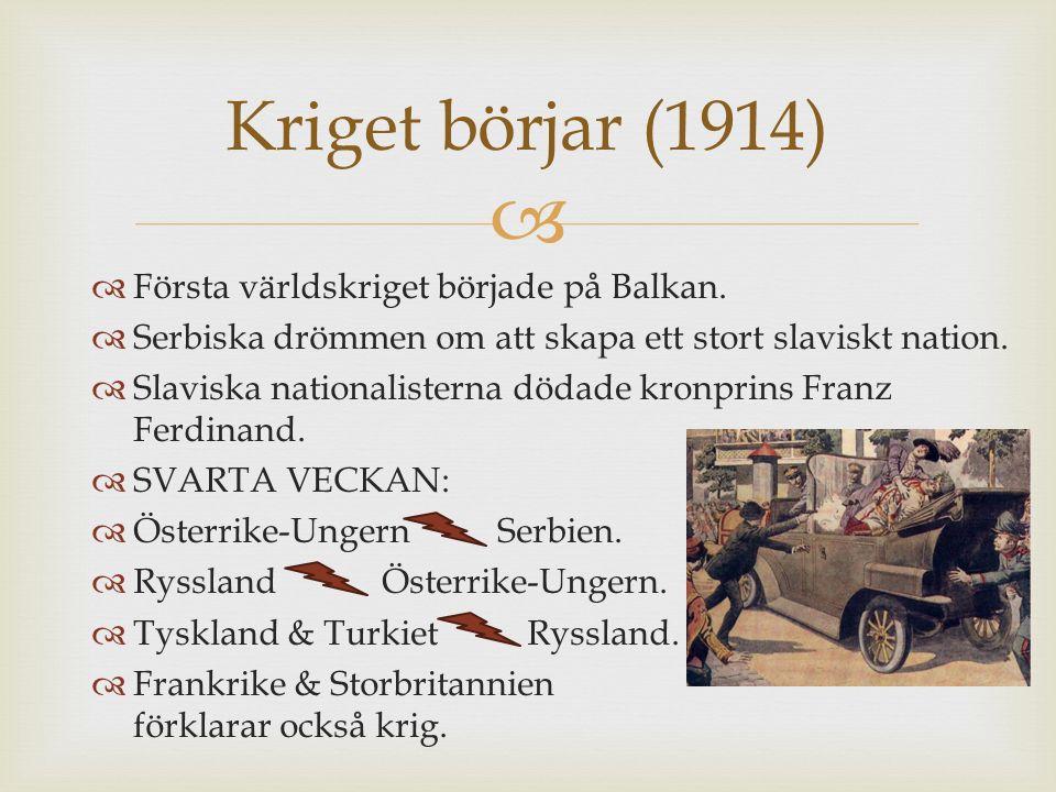 Krig på flera fronter (1914-1917)  Västfronten  Schlieffenplanen.