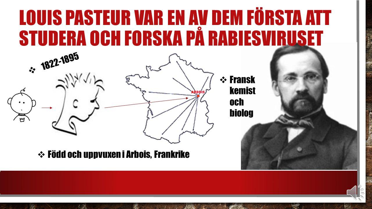 LOUIS PASTEUR VAR EN AV DEM FÖRSTA ATT STUDERA OCH FORSKA PÅ RABIESVIRUSET  1822-1895  Född och uppvuxen i Arbois, Frankrike  Fransk kemist och biolog