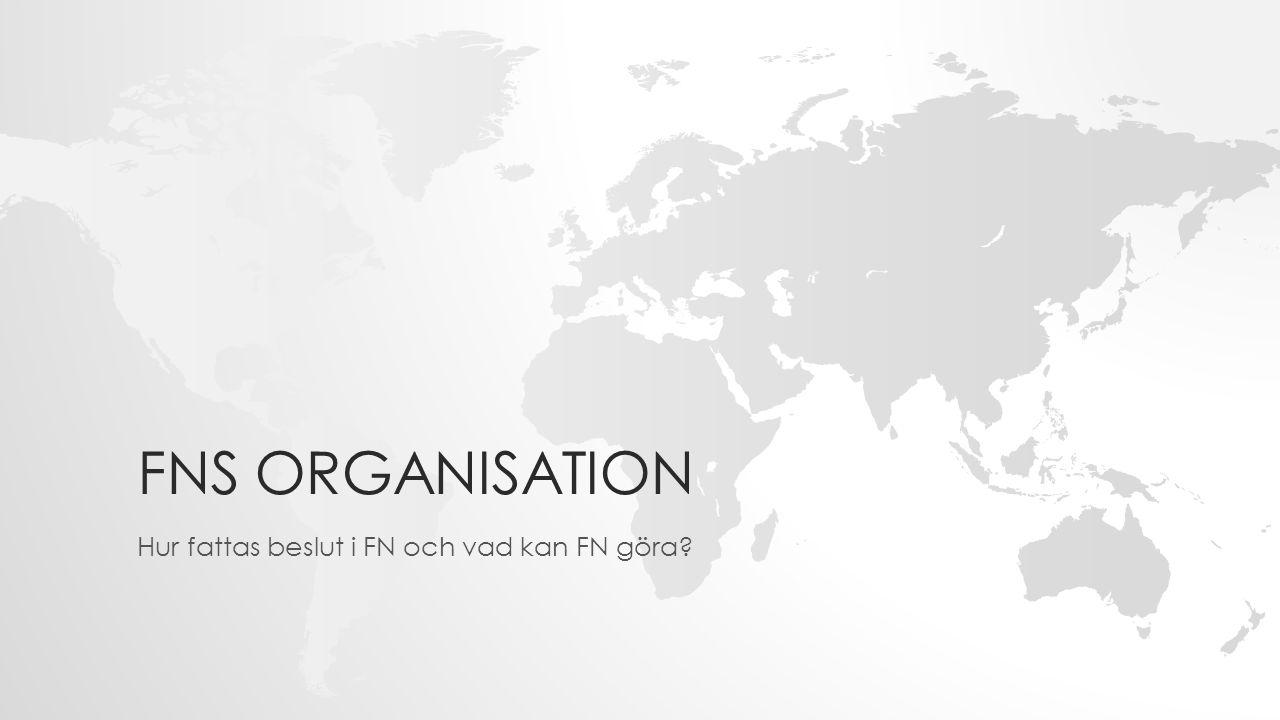 FNS ORGANISATION Hur fattas beslut i FN och vad kan FN göra