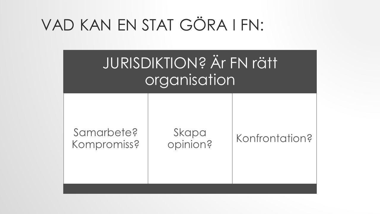 VAD KAN EN STAT GÖRA I FN: JURISDIKTION? Är FN rätt organisation Samarbete? Kompromiss? Skapa opinion? Konfrontation?