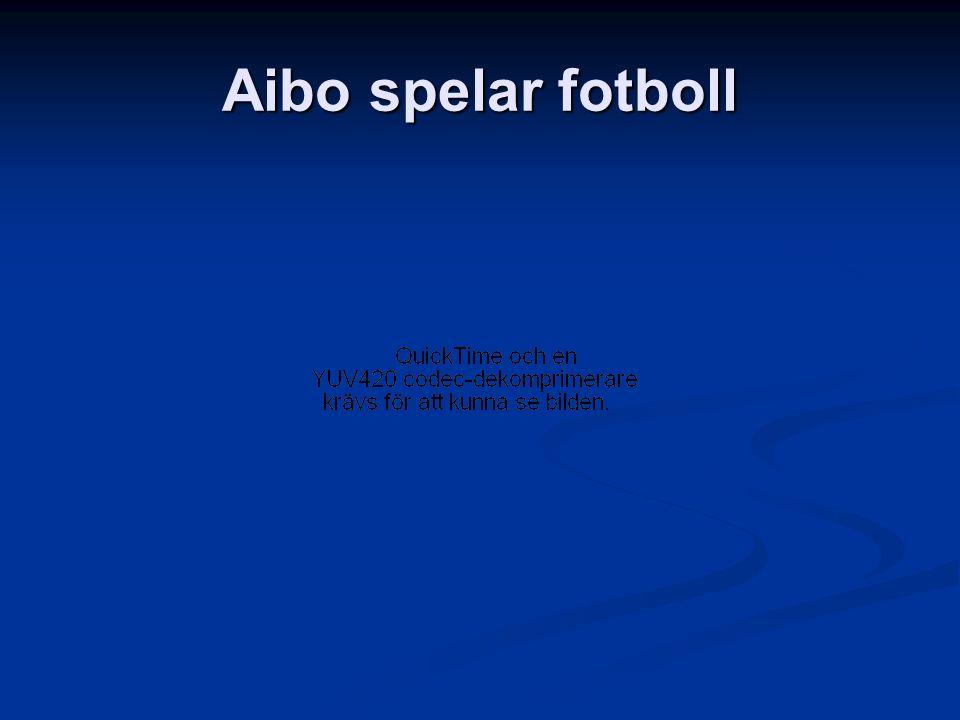 Aibo spelar fotboll