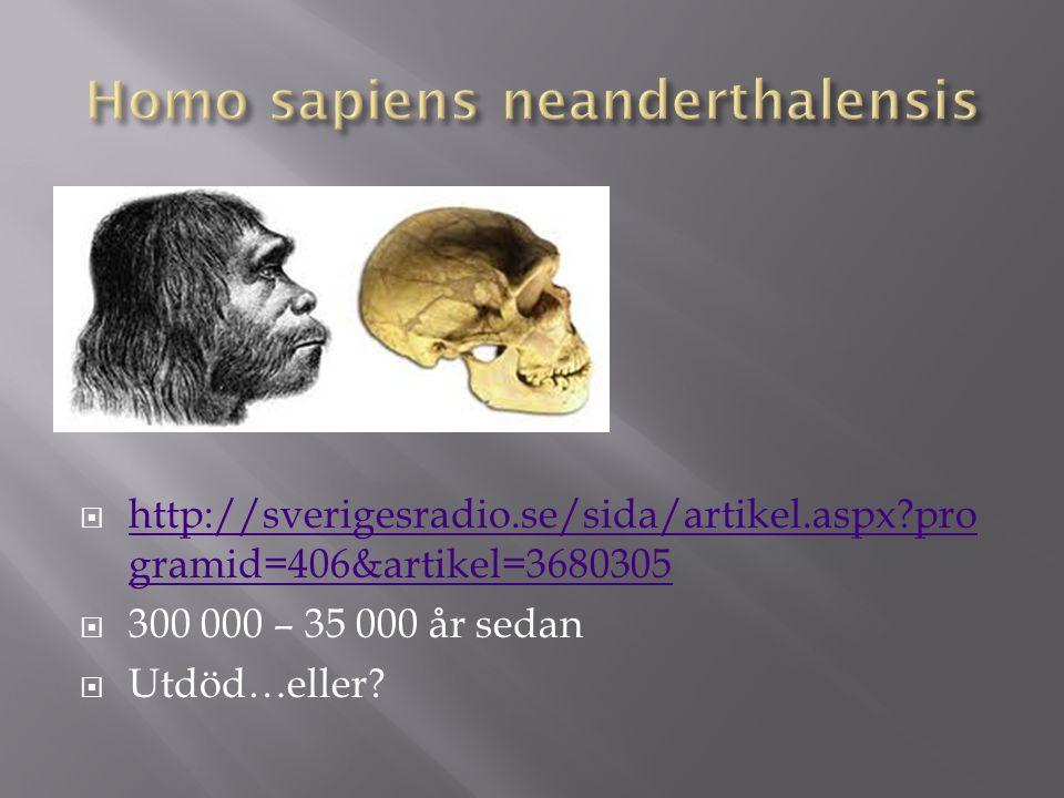  http://sverigesradio.se/sida/artikel.aspx?pro gramid=406&artikel=3680305 http://sverigesradio.se/sida/artikel.aspx?pro gramid=406&artikel=3680305  300 000 – 35 000 år sedan  Utdöd…eller?