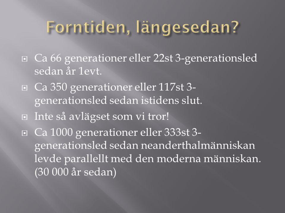  Ca 66 generationer eller 22st 3-generationsled sedan år 1evt.  Ca 350 generationer eller 117st 3- generationsled sedan istidens slut.  Inte så avl