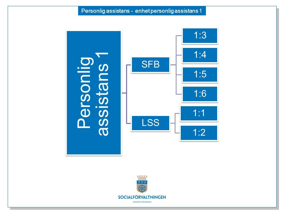 Personlig assistans - enhet personlig assistans 1 Personlig assistans 1 SFB 1:3 1:4 1:5 1:6 LSS 1:1 1:2