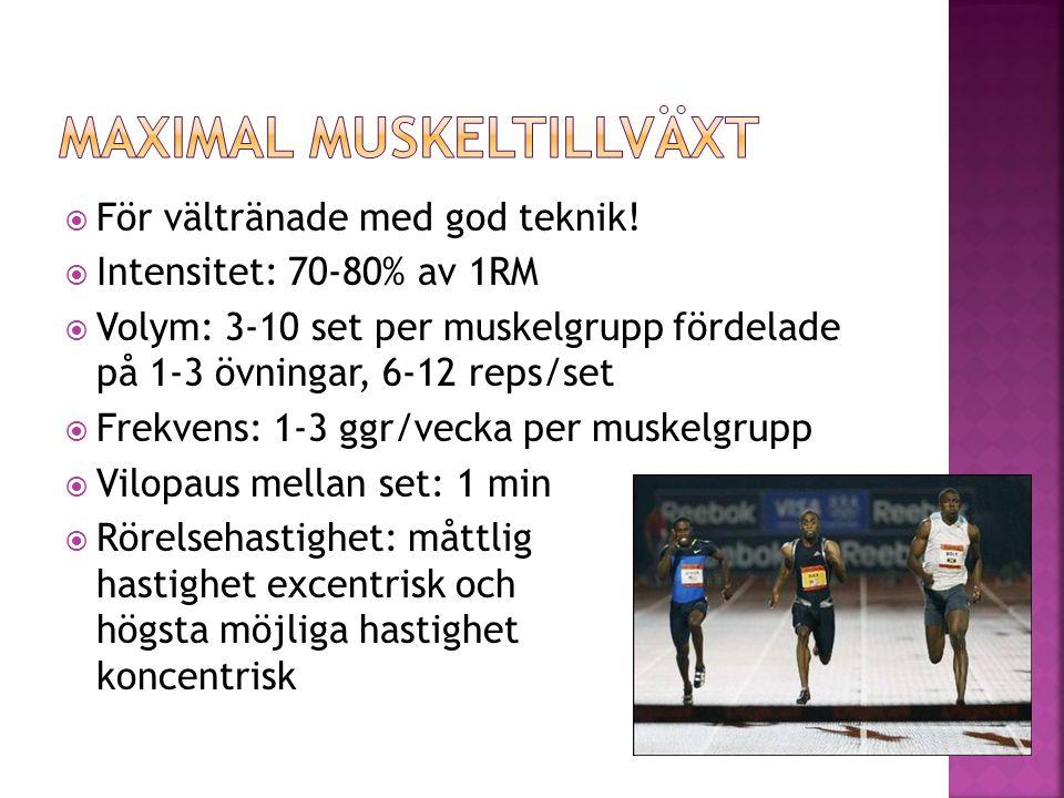  Avgörande faktor för de allra flesta idrottsprestationer  Snabb, spänstig, explosiv  Intensitet: ca 30-60% av 1RM  Volym: 3-6 set/övning, 3-6 reps/set  Frekvens: 1-3 ggr/vecka per muskelgrupp  Vilopaus mellan set: 3-7 min  Rörelsehastighet: excentrisk: kontrollerad/hög, koncentrisk: högsta möjliga