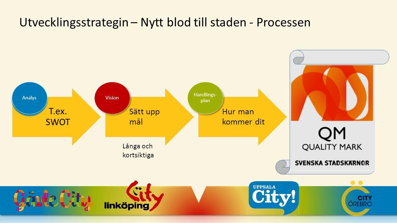 T.ex. SWOT Analys Sätt upp mål Vision Hur man kommer dit Handlings- plan Utvecklingsstrategin – Nytt blod till staden - Processen Långa och kortsiktig