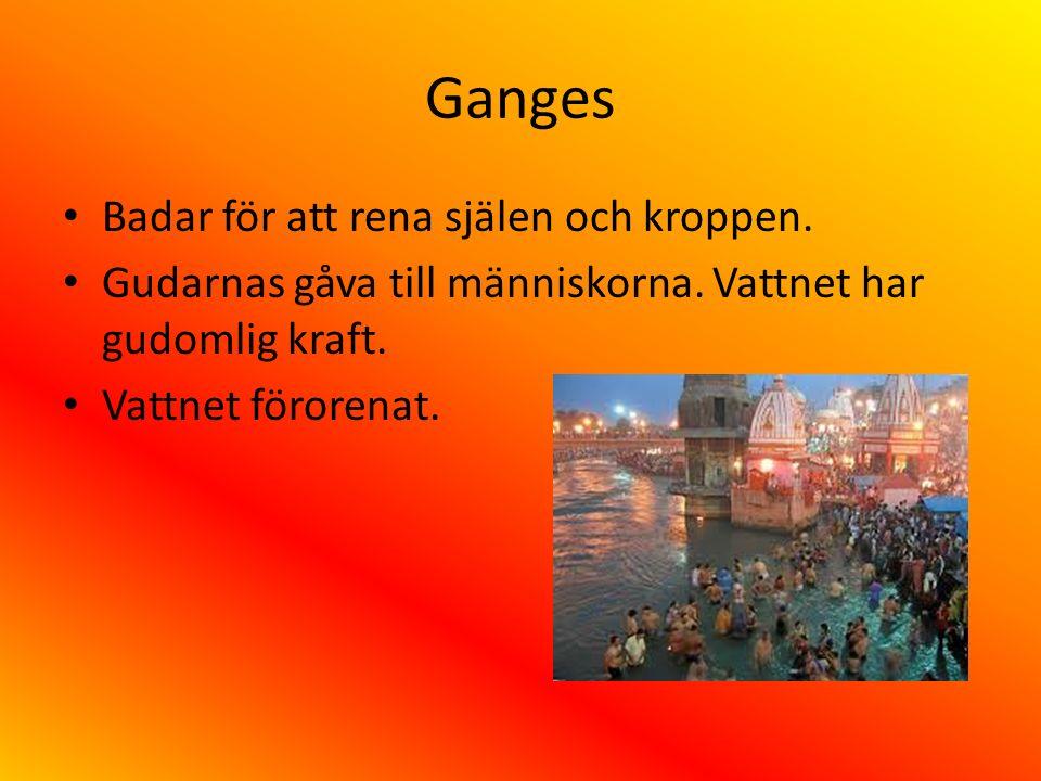 Ganges Badar för att rena själen och kroppen. Gudarnas gåva till människorna. Vattnet har gudomlig kraft. Vattnet förorenat.