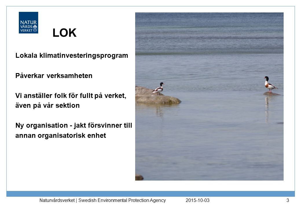 LOK Lokala klimatinvesteringsprogram Påverkar verksamheten Vi anställer folk för fullt på verket, även på vår sektion Ny organisation - jakt försvinner till annan organisatorisk enhet 2015-10-03 Naturvårdsverket | Swedish Environmental Protection Agency 3