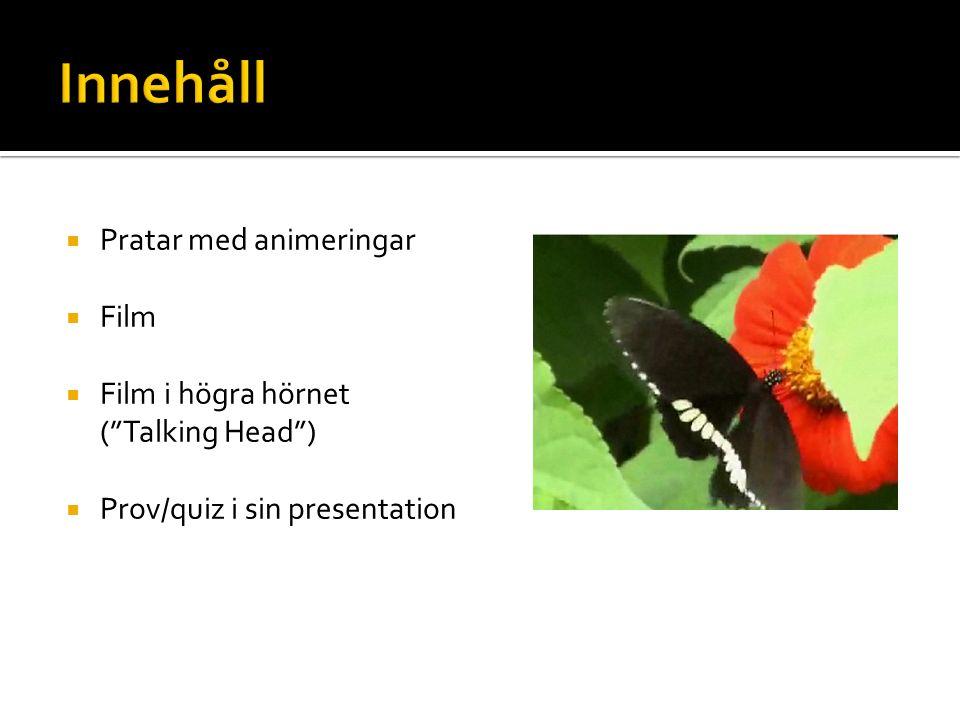  Pratar med animeringar  Film  Film i högra hörnet ( Talking Head )  Prov/quiz i sin presentation