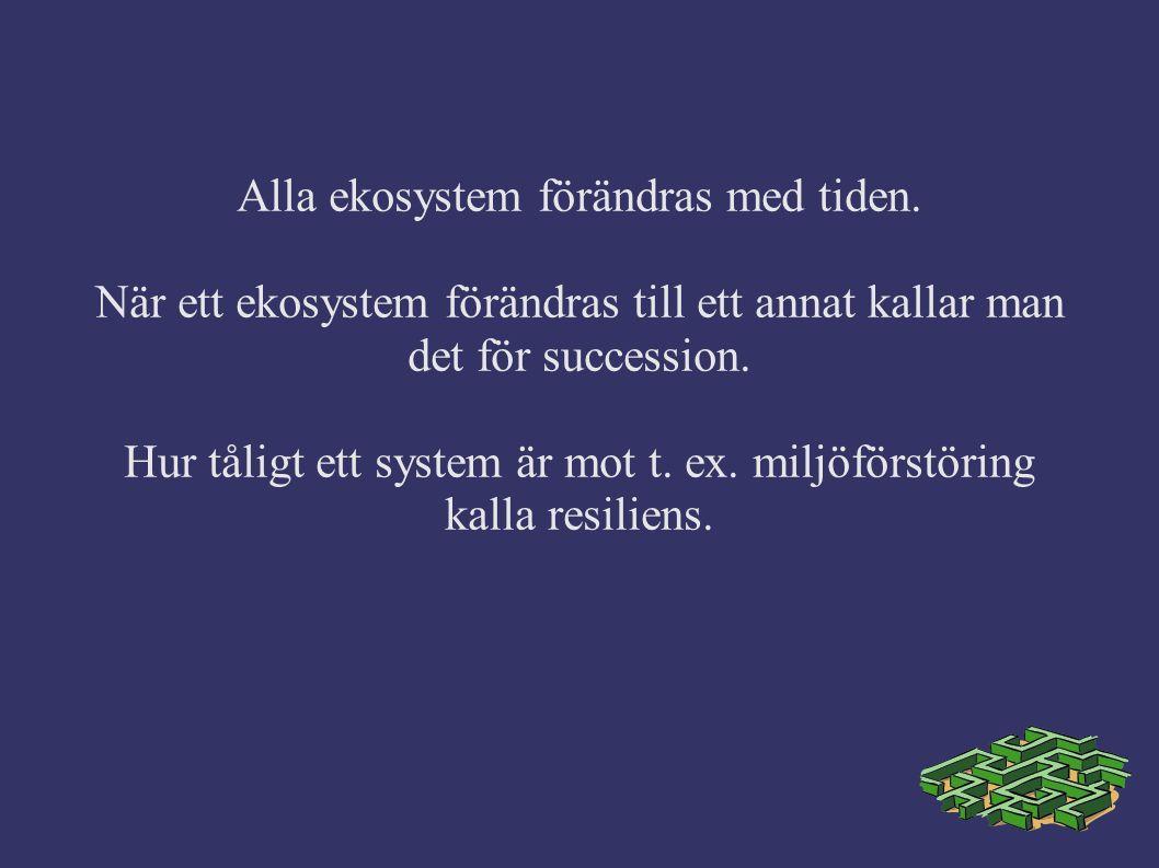 Alla ekosystem förändras med tiden. När ett ekosystem förändras till ett annat kallar man det för succession. Hur tåligt ett system är mot t. ex. milj