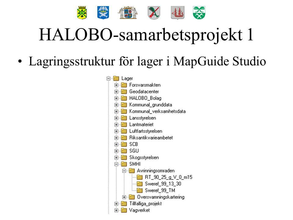 Lagringsstruktur för lager i MapGuide Studio HALOBO-samarbetsprojekt 1