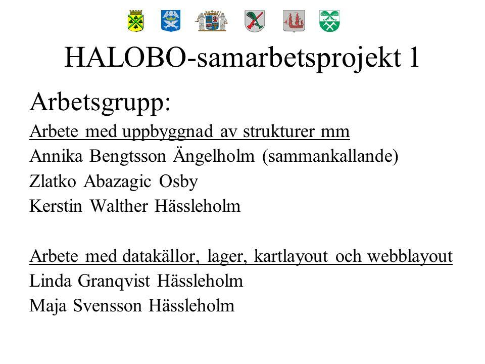 Lagringsstruktur för fildata på server HALOBO-samarbetsprojekt 1