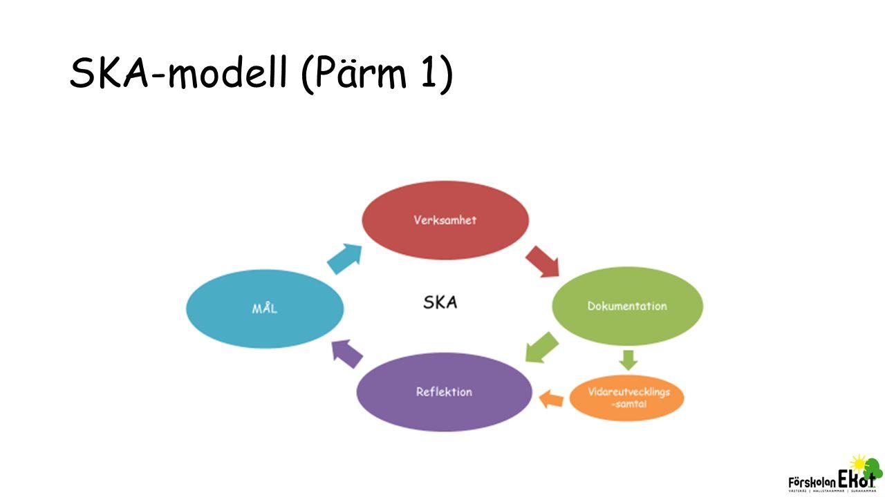 SKA-modell (Pärm 1)
