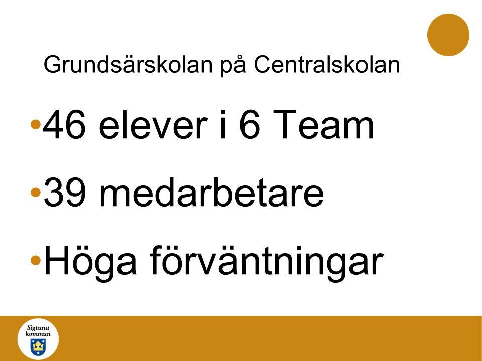 Grundsärskolan på Centralskolan 46 elever i 6 Team 39 medarbetare Höga förväntningar