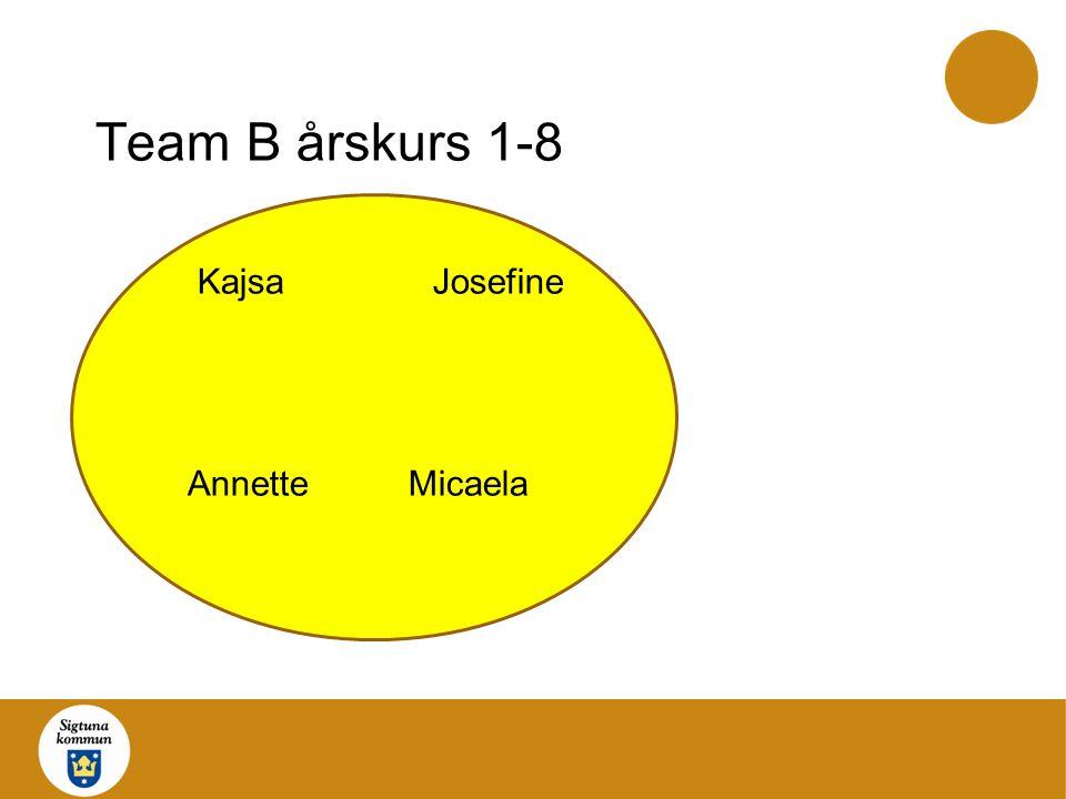 Team C årskurs 1-3 HelgaMona SofieDiana KatarinaMicka Anette