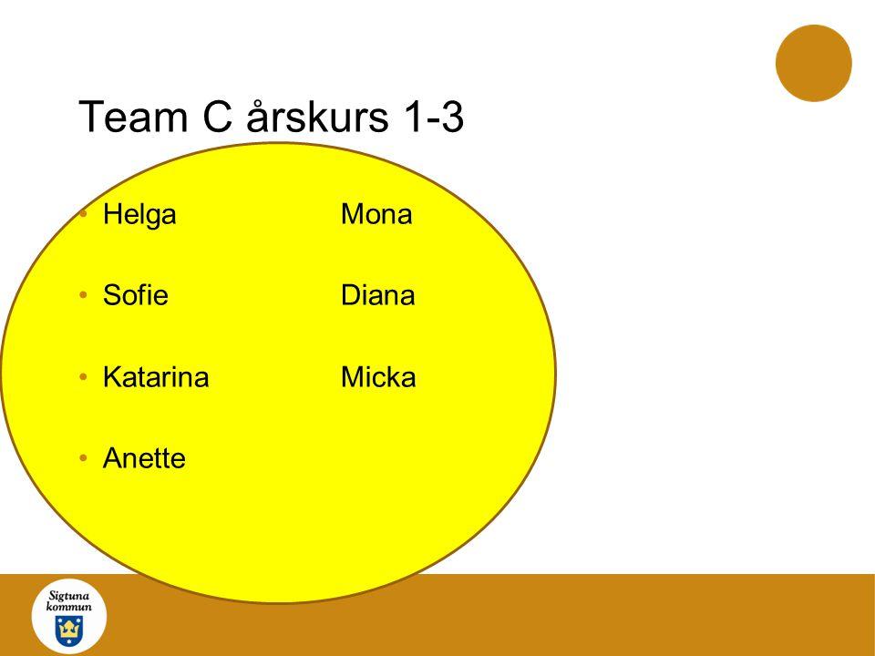 Team D årskurs 3-8 CathrineAnki AnnÅsa JwanZubaida