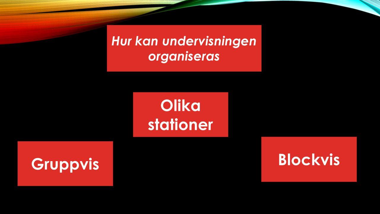 Hur kan undervisningen organiseras Blockvis Gruppvis Olika stationer