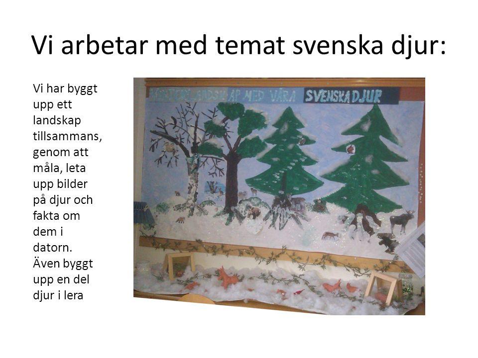 Vi arbetar med temat svenska djur: Vi har byggt upp ett landskap tillsammans, genom att måla, leta upp bilder på djur och fakta om dem i datorn. Även