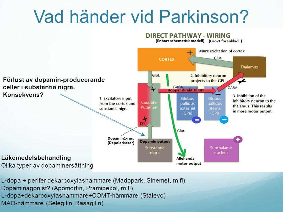 Vad händer vid Parkinson? Förlust av dopamin-producerande celler i substantia nigra. Konsekvens? Läkemedelsbehandling Olika typer av dopaminersättning