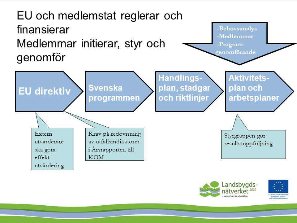EU direktiv Svenska programmen Handlings- plan, stadgar och riktlinjer Aktivitets- plan och arbetsplaner -Behovsanalys -Medlemmar -Program- genomförande Extern utvärderare ska göra effekt- utvärdering Krav på redovisning av utfallsindikatorer i Årsrapporten till KOM Styrgruppen gör resultatuppföljning EU och medlemstat reglerar och finansierar Medlemmar initierar, styr och genomför