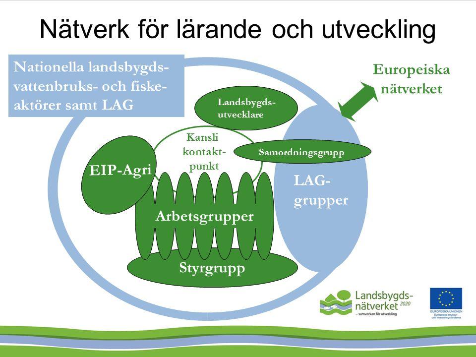 Styrgrupp Kansli kontakt- punkt LAG- grupper Europeiska nätverket EIP-Agri Nationella landsbygds- vattenbruks- och fiske- aktörer samt LAG Samordningsgrupp Arbetsgrupper Landsbygds- utvecklare Nätverk för lärande och utveckling