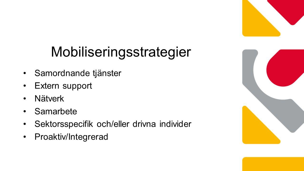 Samordnande tjänster Extern support Nätverk Samarbete Sektorsspecifik och/eller drivna individer Proaktiv/Integrerad Mobiliseringsstrategier