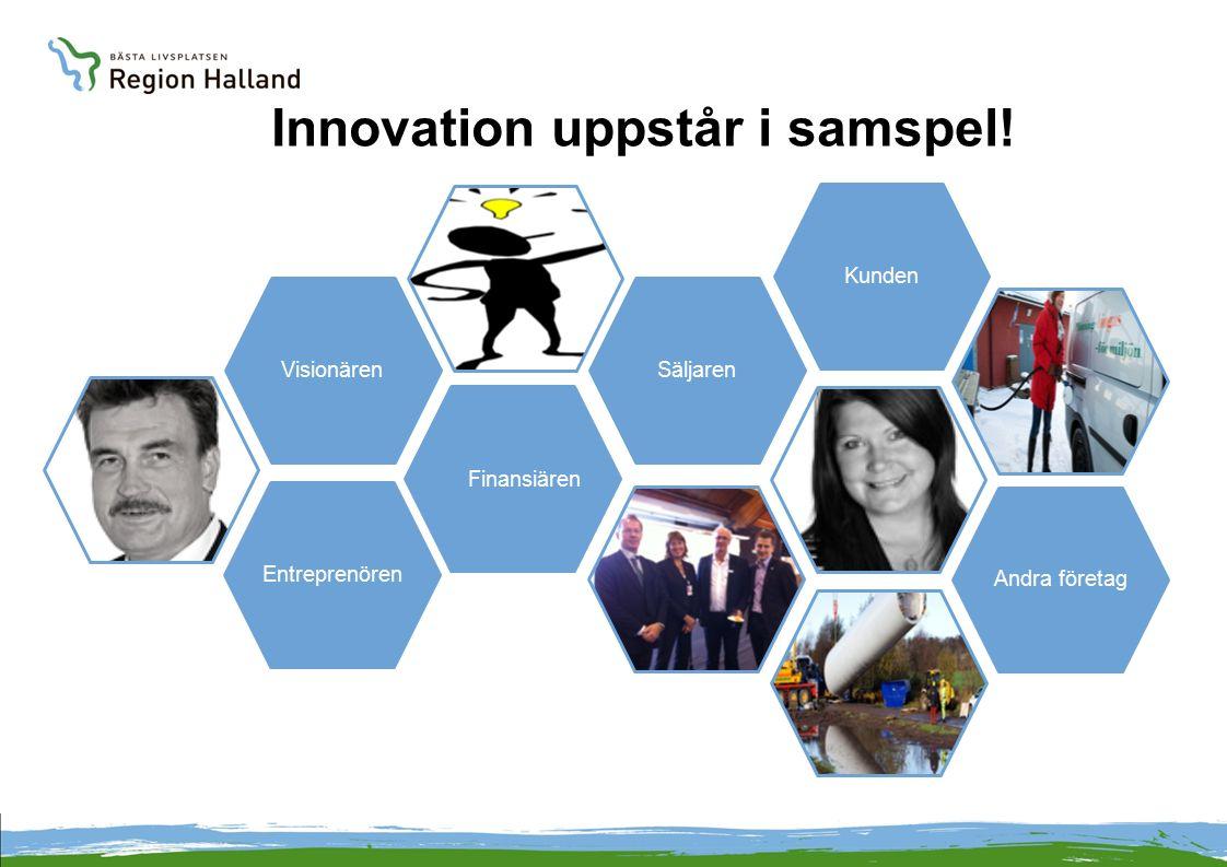 Innovation uppstår i samspel! VisionärenEntreprenören Finansiären SäljarenKundenAndra företag