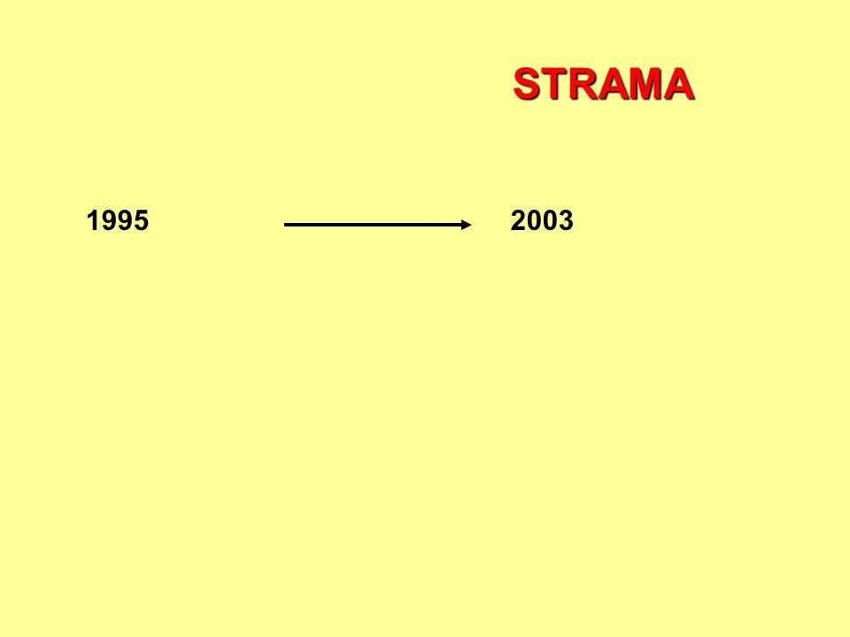 19952003 STRAMA