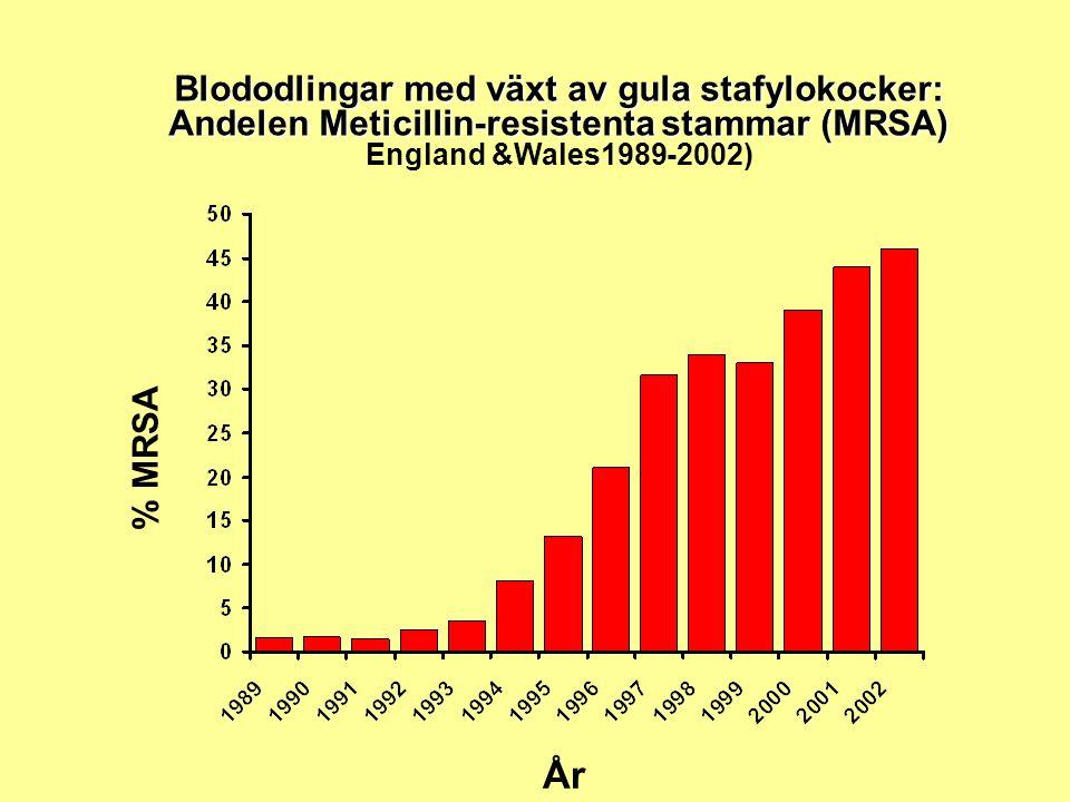 Blododlingar med växt av gula stafylokocker: Andelen Meticillin-resistenta stammar (MRSA) Blododlingar med växt av gula stafylokocker: Andelen Meticillin-resistenta stammar (MRSA) England &Wales1989-2002) % MRSA År