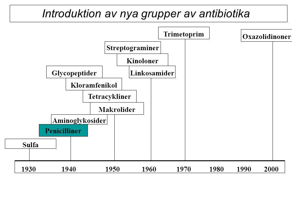 Sulfa Tetracykliner Penicilliner Aminoglykosider Makrolider Glycopeptider Streptograminer Kloramfenikol Kinoloner Trimetoprim Linkosamider 1930 1940 1950 1960 1970 1980 1990 2000 Oxazolidinoner Introduktion av nya grupper av antibiotika
