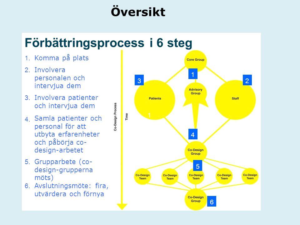 Översikt Förbättringsprocess i 6 steg 1. Komma på plats 2. Involvera personalen och intervjua dem 3. Involvera patienter och intervjua dem 4. Samla pa