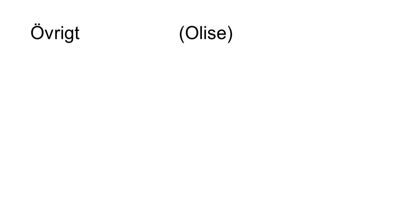 Övrigt(Olise)