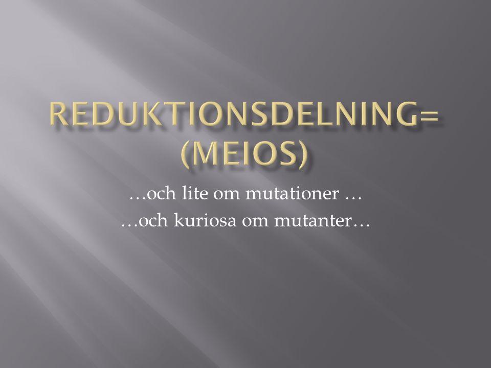 …och lite om mutationer … …och kuriosa om mutanter…