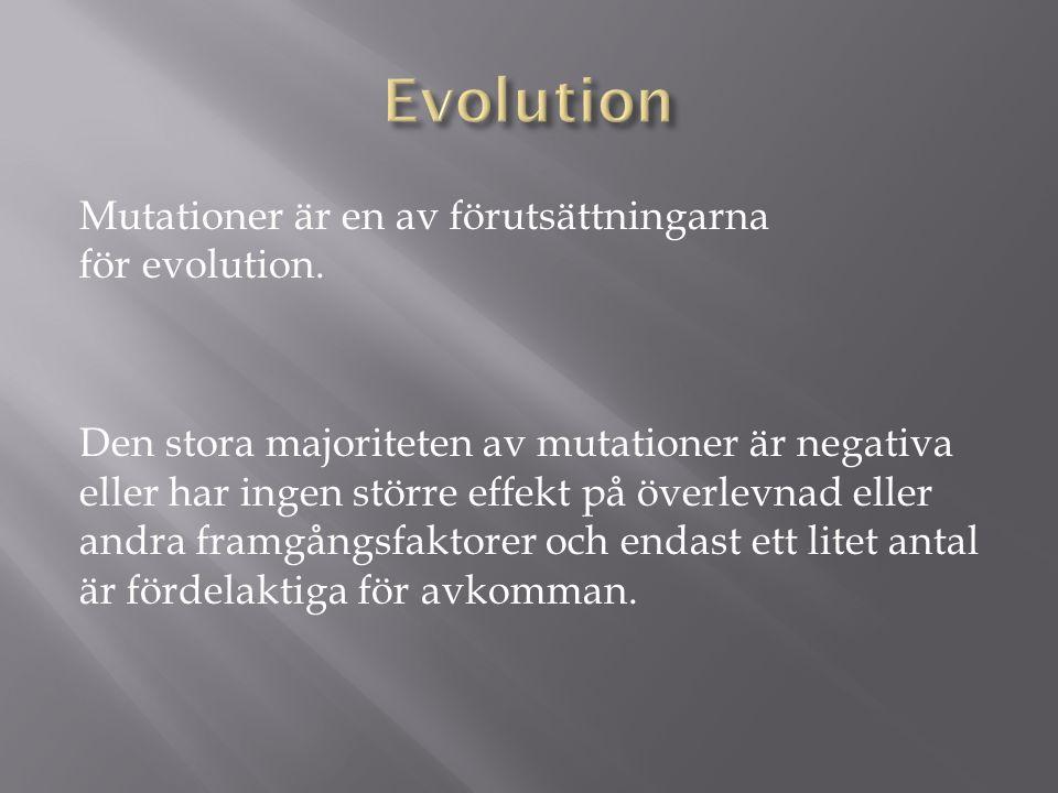 Mutationer är en av förutsättningarna för evolution.