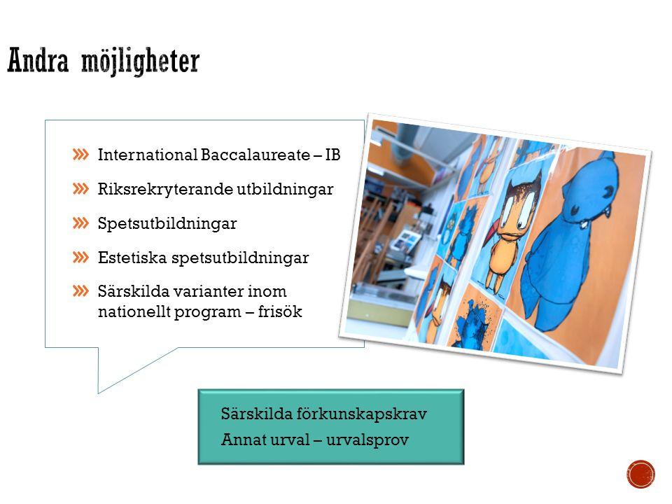 Särskilda förkunskapskrav Annat urval – urvalsprov International Baccalaureate – IB Riksrekryterande utbildningar Spetsutbildningar Estetiska spetsutbildningar Särskilda varianter inom nationellt program – frisök