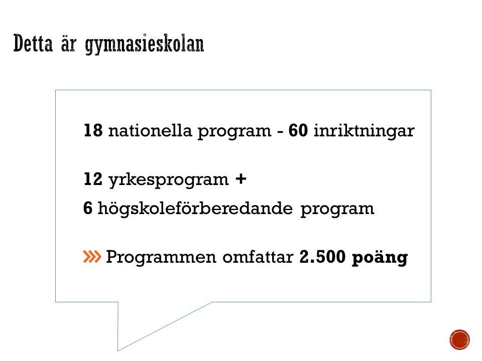 18 nationella program - 60 inriktningar 12 yrkesprogram + 6 högskoleförberedande program Programmen omfattar 2.500 poäng test