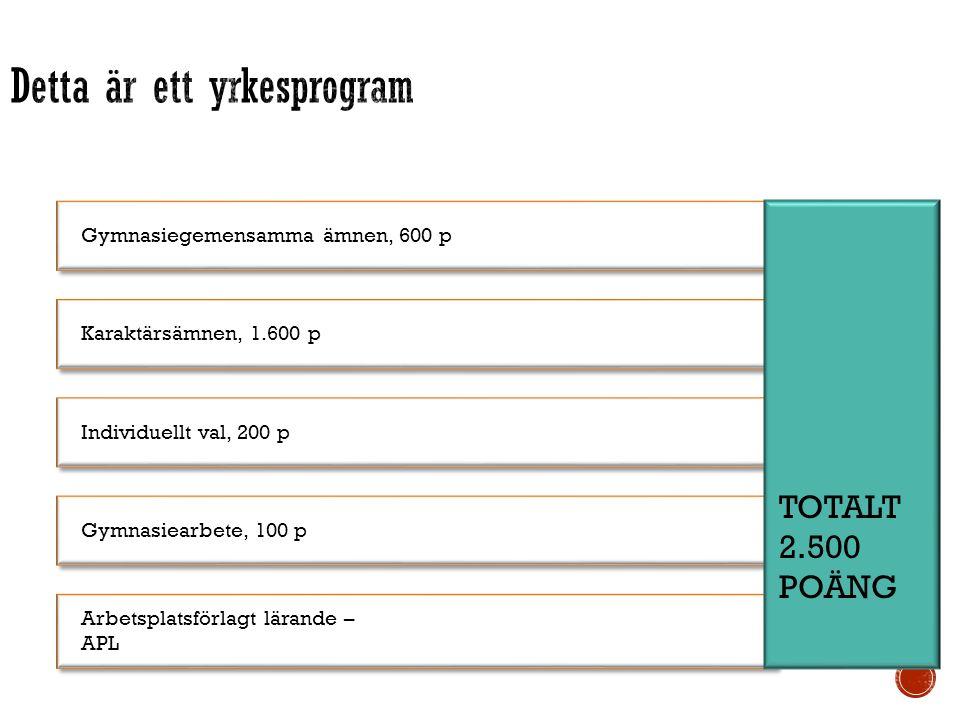 Yrkesexamen = Grundläggande behörighet till yrkeshögskolan Rätt att läsa kurser som ger grundläggande behörighet till högskolan Gymnasiegemensamma ämnen, 600 p Engelska, historia, idrott och hälsa, matematik, naturkunskap, religionskunskap, samhällskunskap, svenska/svenska som andraspråk Karaktärsämnen, 1.600 p Programgemensamma kurser Inriktningar Programfördjupningar – yrkesutgångar