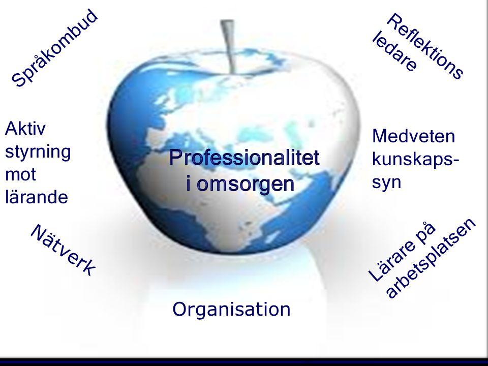© Consider Reflektions ledare Språkombud Lärare på arbetsplatsen Nätverk Aktiv styrning mot lärande Medveten kunskaps- syn Organisation