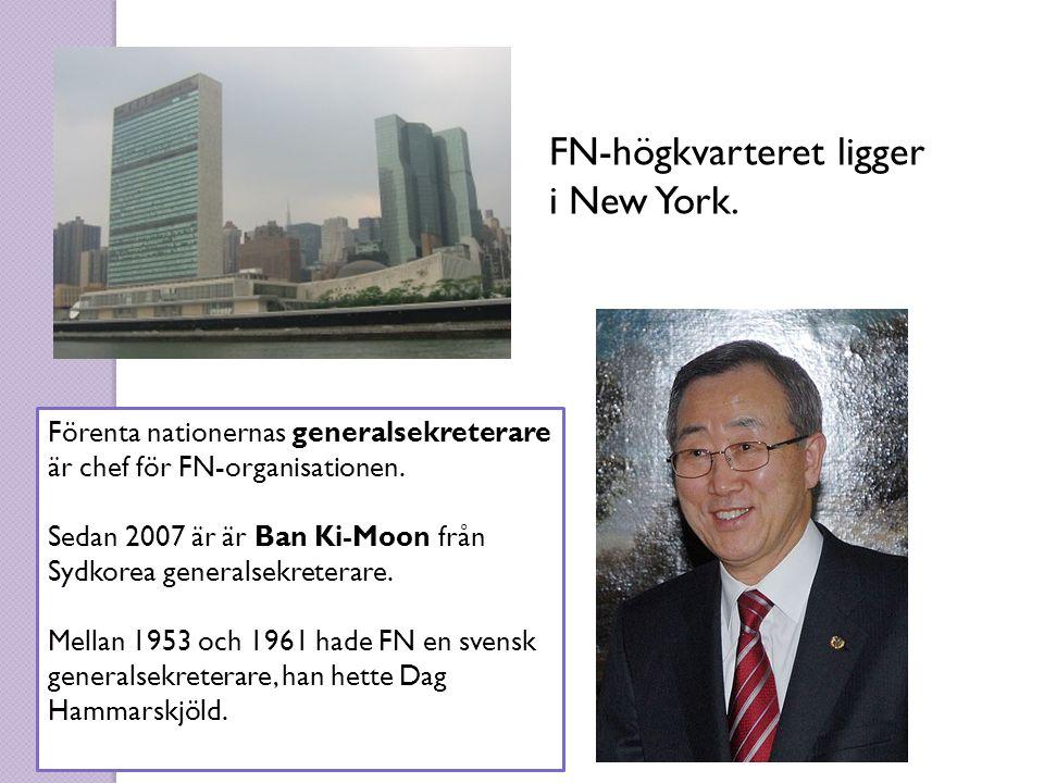 FN-högkvarteret ligger i New York. Förenta nationernas generalsekreterare är chef för FN-organisationen. Sedan 2007 är är Ban Ki-Moon från Sydkorea ge