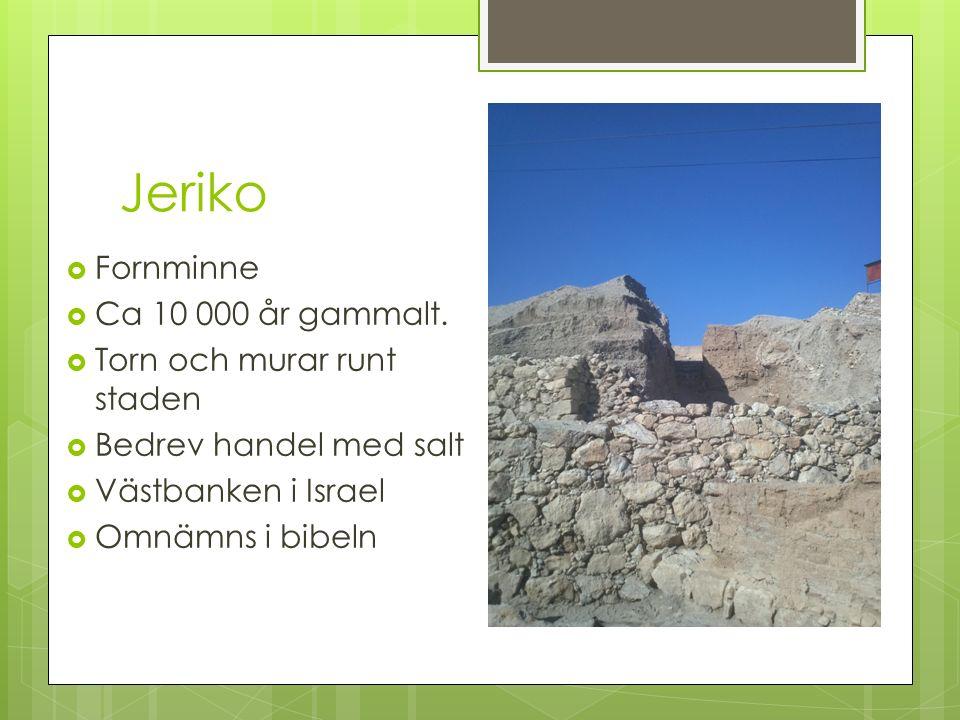 Jeriko  Fornminne  Ca 10 000 år gammalt.  Torn och murar runt staden  Bedrev handel med salt  Västbanken i Israel  Omnämns i bibeln
