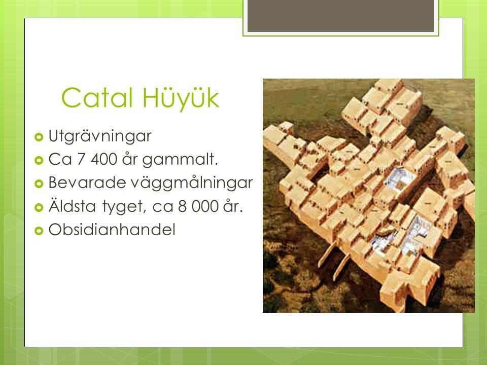 Catal Hüyük  Utgrävningar  Ca 7 400 år gammalt.  Bevarade väggmålningar  Äldsta tyget, ca 8 000 år.  Obsidianhandel
