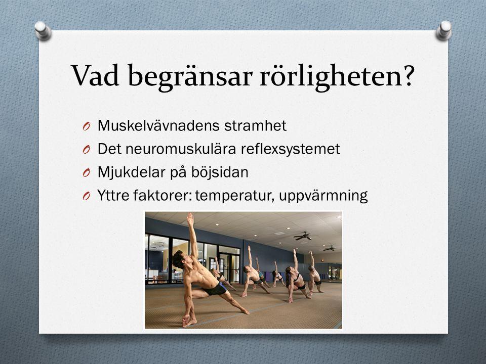 Vad begränsar rörligheten? O Muskelvävnadens stramhet O Det neuromuskulära reflexsystemet O Mjukdelar på böjsidan O Yttre faktorer: temperatur, uppvär