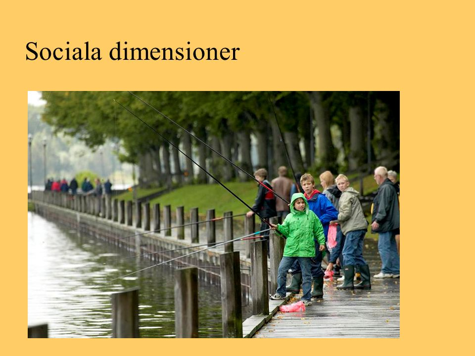 Sociala dimensioner