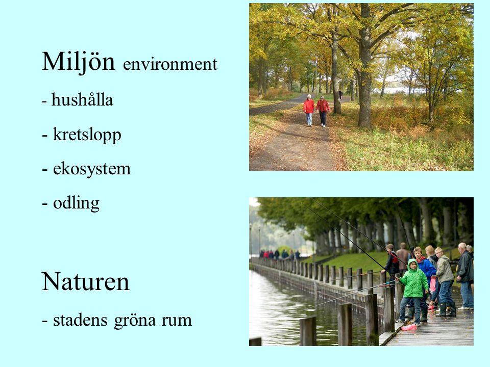 Miljön environment - hushålla - kretslopp - ekosystem - odling Naturen - stadens gröna rum
