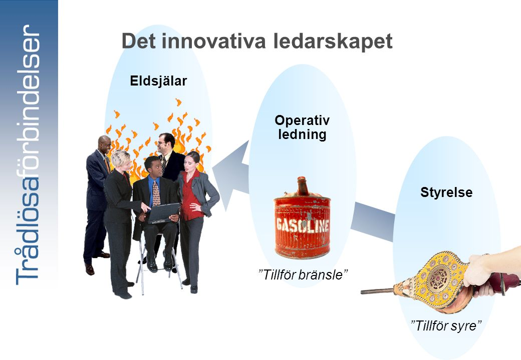 Styrelse Tillför syre Operativ ledning Tillför bränsle Eldsjälar Det innovativa ledarskapet