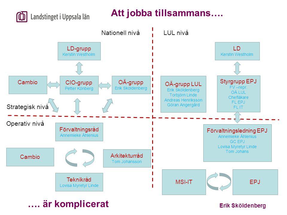 Erik Sköldenberg Att jobba tillsammans…. …. är komplicerat OÄ-grupp LUL Erik Sköldenberg Torbjörn Linde Andreas Henriksson Göran Angergård Styrgrupp E